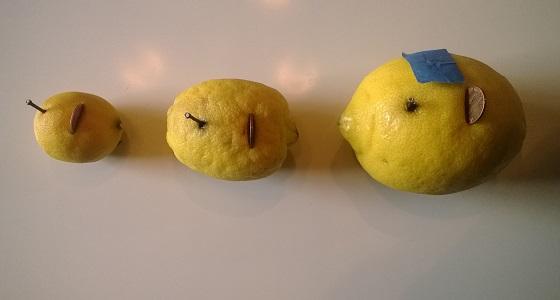 Lemon Batteries